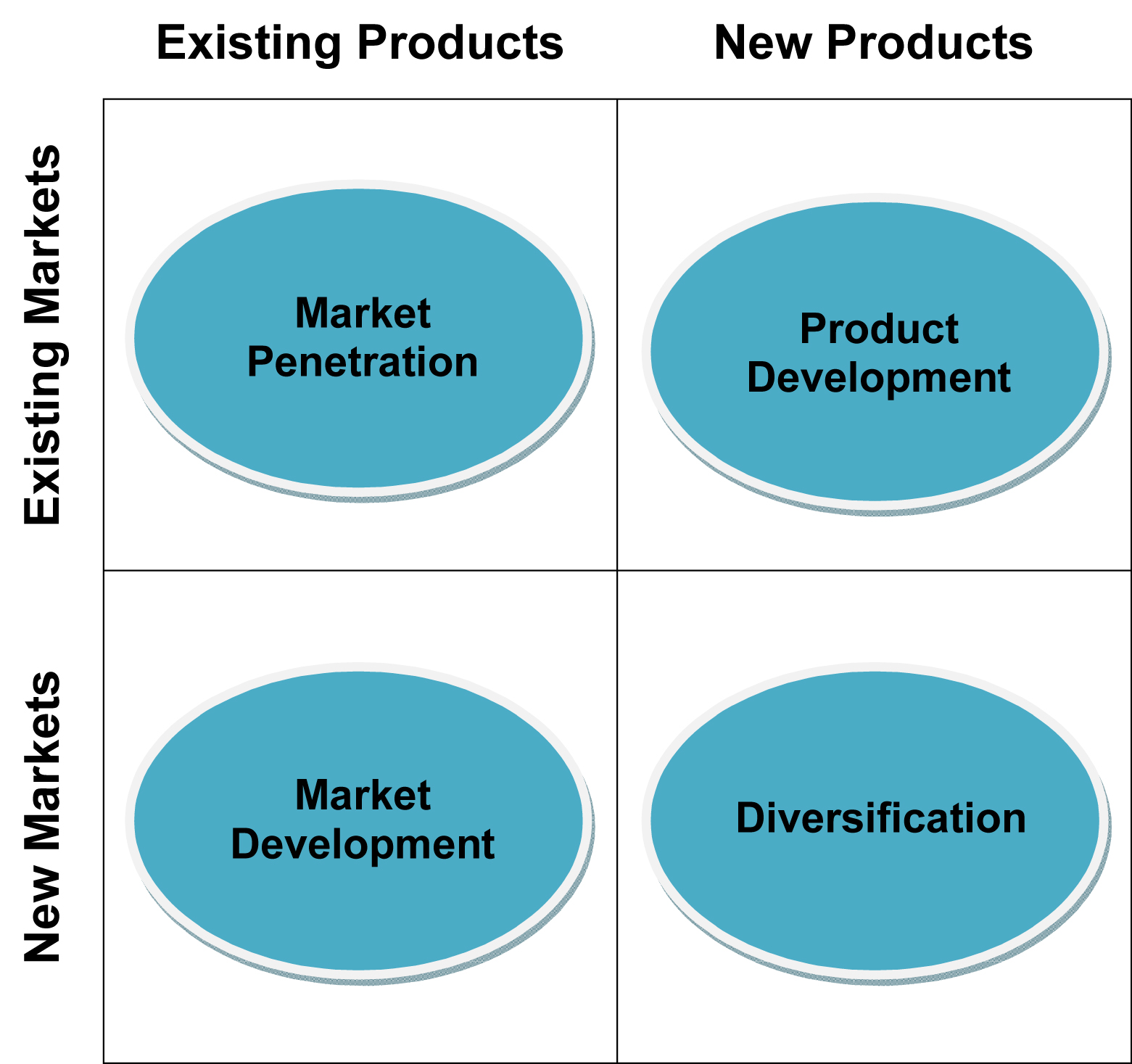 ansoff s matrix The ansoff matrix helps you strategies for future product growth, considering the market and product direction get started with our ansoff matrix template.
